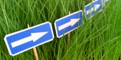 arrow signs in grass