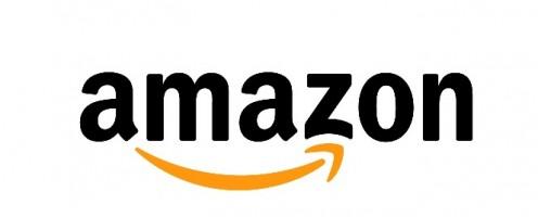Amazon's Seasonal Customer Service Jobs