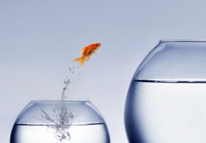 3 Ways to Get a Better Job