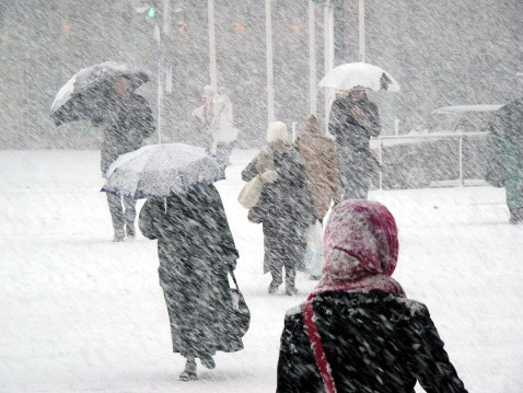 5 Tips for Job Searching in Bad Weather