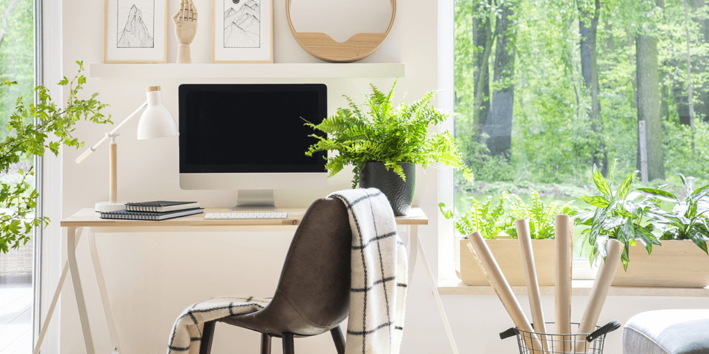 5 Houseplants to Freshen up Your Home Office